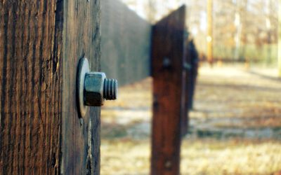 BOARD MEMBER FIDUCIARY DUTY: A Nuts and Bolts Approach